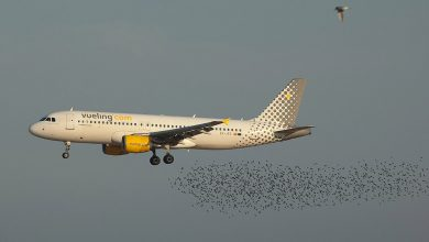 Photo of Fotoweek: Vueling A320 met vogels