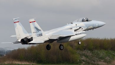 Photo of Amerikaanse F-15's geland op Leeuwarden