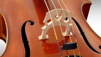 Photo of Cello mag niet reizen zonder visum