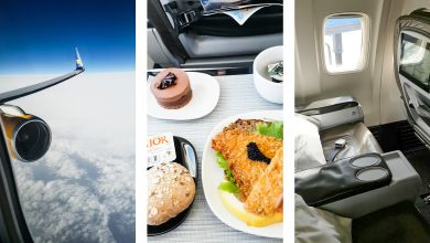 Photo of Flight review: Icelandair Business Class   Video
