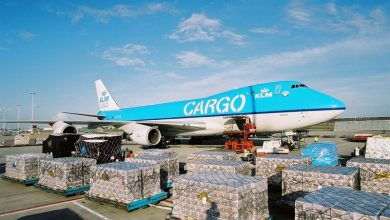 Photo of Boeing 747 van KLM Cargo aan de grond in Zimbabwe