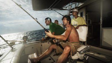Photo of Big game vissen bij Aruba – Wideoyster