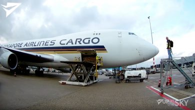 Photo of Achter de schermen bij cargo-afhandeling | Video