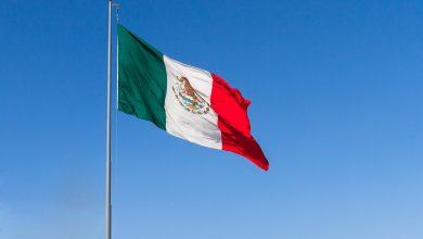 Photo of Vondst mammoeten vertraagt bouw luchthaven Mexico-Stad | Foto's