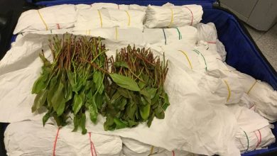 Photo of Mannen met 45 kilo drugs opgepakt op Eindhoven Airport