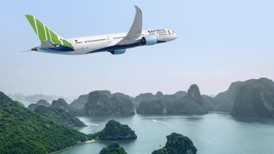 Photo of Bamboo Airways in de zomer met Dreamliner naar Duitsland