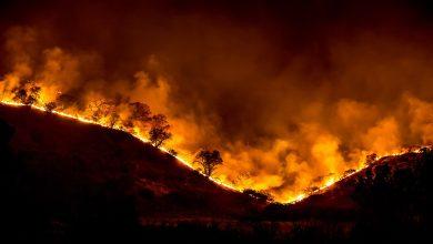 Photo of Rode rook van bosbranden maakt landen onmogelijk | video