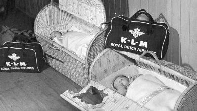 Photo of Twee KLM-stewardessen in de Tweede Wereldoorlog: nieuwe expositie Aviodrome